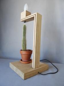 cactus 3 quarts