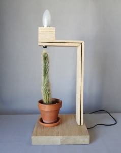 cactus ensemble